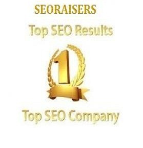 Top seo company in chandigarh - seoraisers